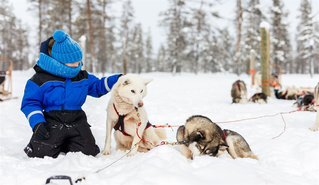 Guide to Lapland Winter Holidays; where to go and what to do : Section 2
