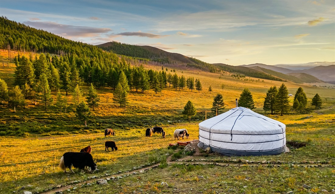 Five amazing things to do in Mongolia : Section 2