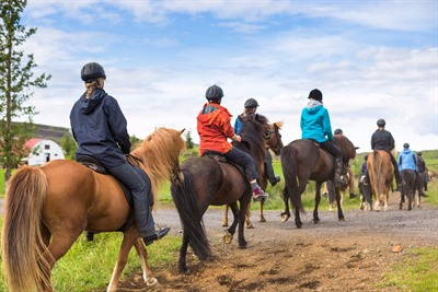 Horse riding in Iceland: getting back in the saddle