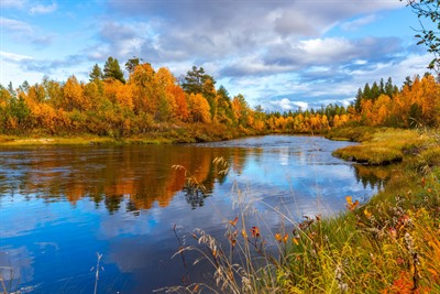 The Secret Seasons: Summer and Autumn in Lapland