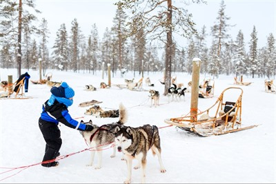 The expert's guide to Lapland Winter Holidays; where to go and what to do
