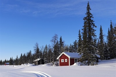 Sweden Winter Holidays