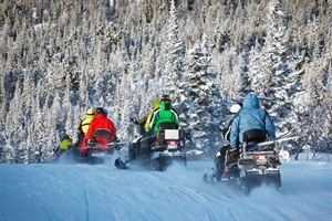 Easy Snowmobile Safari 1
