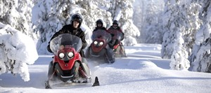 Snowmobile Safari to the Wilderness Lodge 1