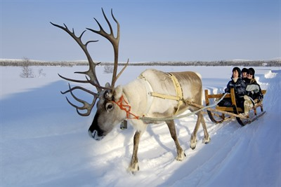 Reindeer Safari to Ice Fishing Lake