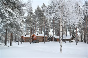 Snowy scenes at Arctic Retreat