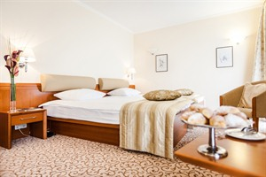 Grand Union Hotel Executive - Double Room