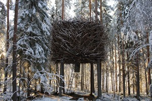 Birds Nest at the Treehotel Sweden
