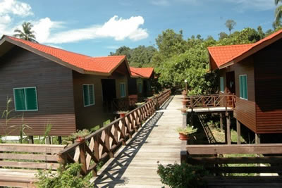 Borneo Hotels Near Orangutan Sanctuary