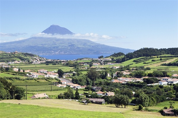 FREE DAY ON FAIAL ISLAND