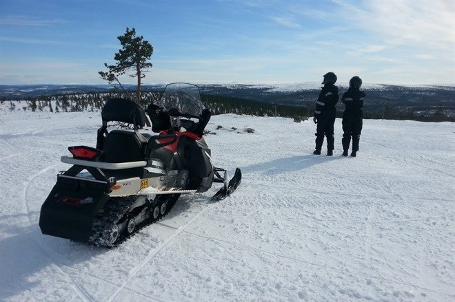 Reindeers, snowmobiling and northern lights