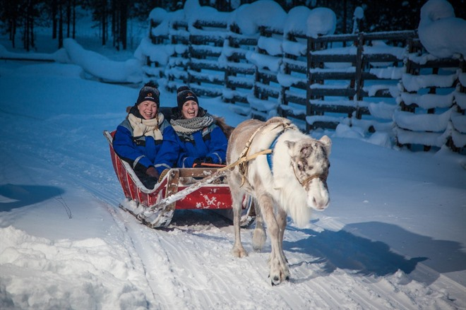 REINDEER, HUSKY & SNOWMOBILE EXCURSIONS