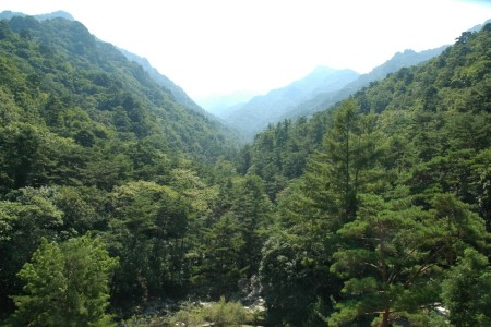 Saturday 8th September - Myohyang to Kaesong