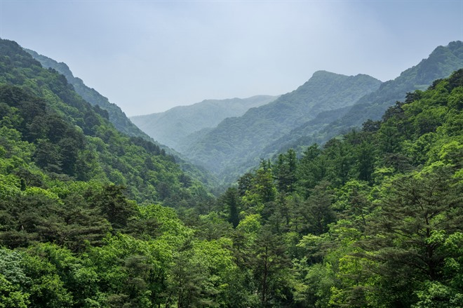 Friday 14th August - Mt. Myohyang to Pyongyang