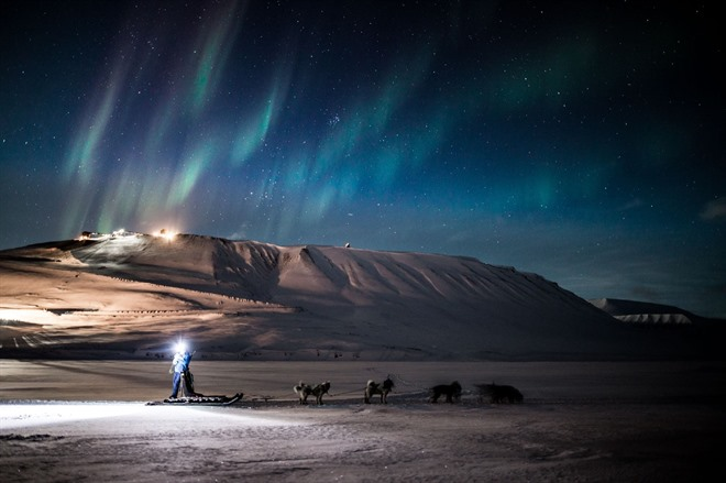 Polar Night Dog Sledding. Photo Credit: Green Dog/Hurtigruten Svalbard