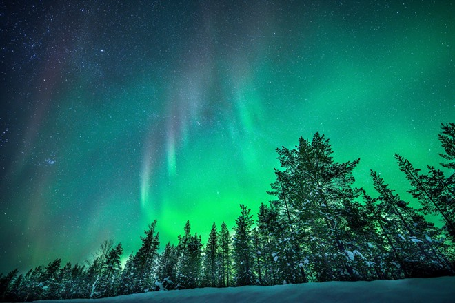 SNOWSHOEING, REINDEER & THE NORTHERN LIGHTS