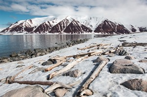 Arctic Cruises - West Spitsbergen & Polar Ice Edge 1