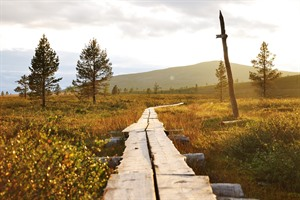 Lapland - Hiking Trail