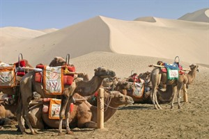 Along the Silk Road of China 4