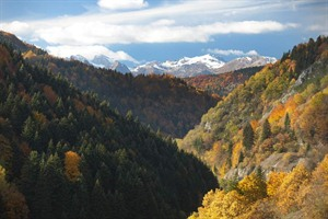 Mavrovo National Park, North Macedonia