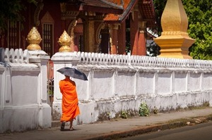 Monk walking through Luang Prabang