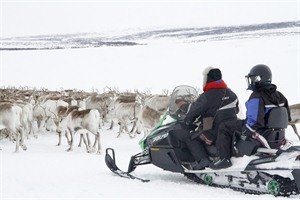 Snowmobiling and herding reindeer