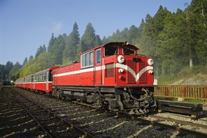 Red Forest Train, Alishan National Scenic Area