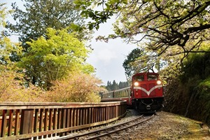 Alishan Forest Train,Taiwan