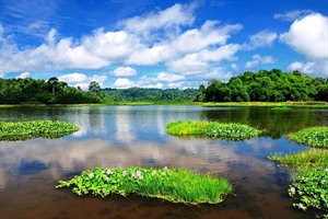 Crocodile Lake, Nam Cat Tien National Park