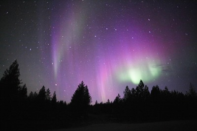 Autumn Auroras at Wilderness Hotel Inari