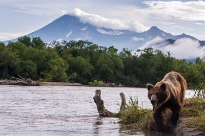 Classic Kamchatka Russia Group Tour