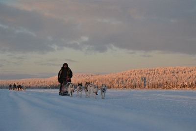 Lapland Arctic Light Adventure Break