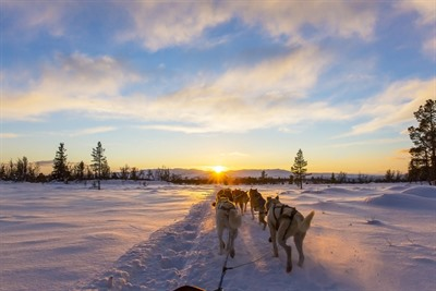 Taste of Lapland Short Break