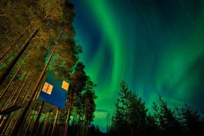Treehotel Winter Break